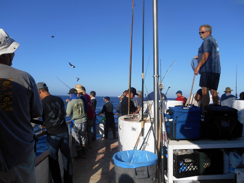Tuna fishing in southern california 2014 otto gasser for Best fishing in southern california